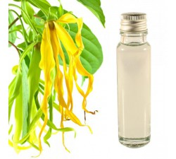 Ylang Ylang 20ml - Aceite Esenciale